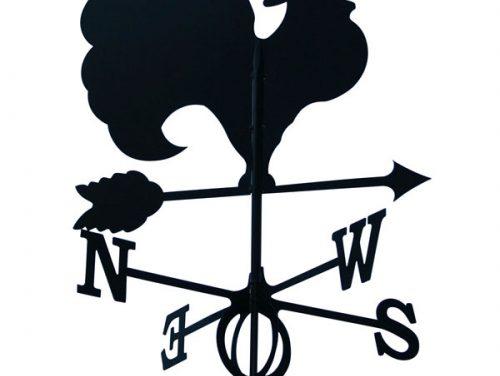 La CGSP propose au Gouvernement wallon de changer d'emblème.